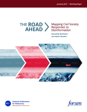 The Road Ahead: Mapping Civil Society Responses to Disinformation